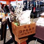 レトロな木箱と梅の木